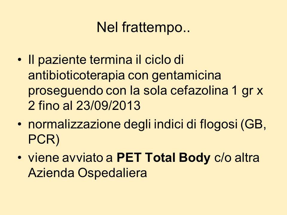 Nel frattempo.. Il paziente termina il ciclo di antibioticoterapia con gentamicina proseguendo con la sola cefazolina 1 gr x 2 fino al 23/09/2013 norm