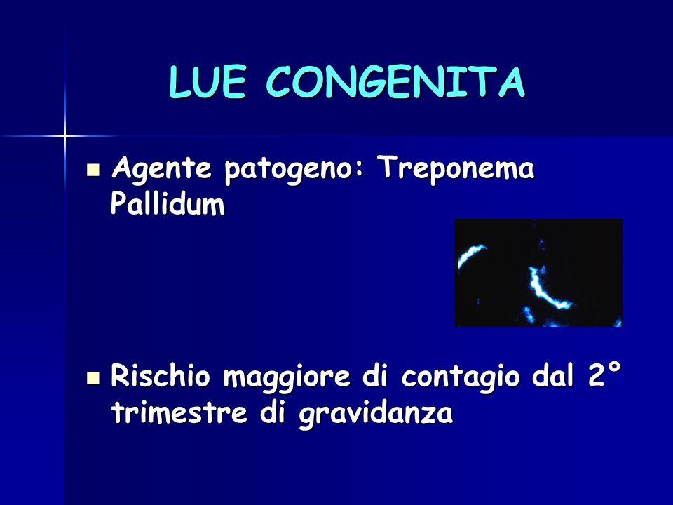 LUE CONGENITA Agente patogeno: Treponema Pallidum Agente patogeno: Treponema Pallidum Rischio maggiore di contagio dal 2° trimestre di gravidanza Risc
