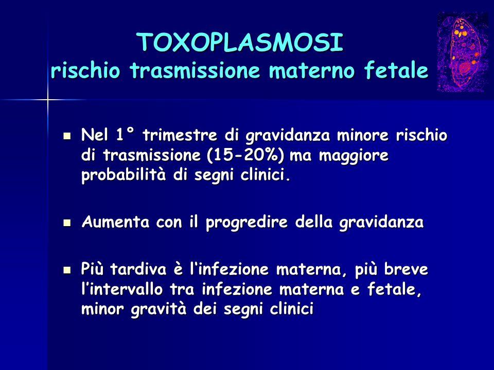 TOXOPLASMOSI rischio trasmissione materno fetale Nel 1° trimestre di gravidanza minore rischio di trasmissione (15-20%) ma maggiore probabilità di seg