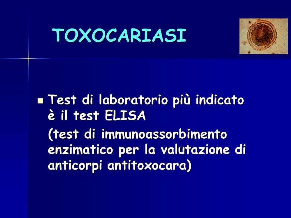TOXOCARIASI Test di laboratorio più indicato è il test ELISA Test di laboratorio più indicato è il test ELISA (test di immunoassorbimento enzimatico p