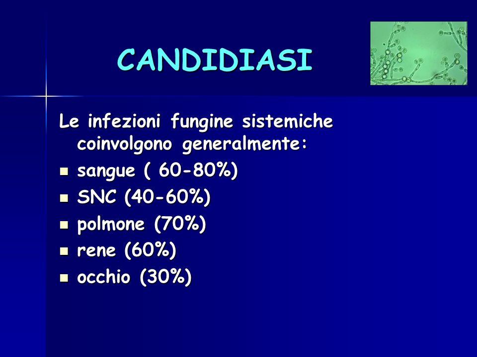 CANDIDIASI Le infezioni fungine sistemiche coinvolgono generalmente: sangue ( 60-80%) sangue ( 60-80%) SNC (40-60%) SNC (40-60%) polmone (70%) polmone