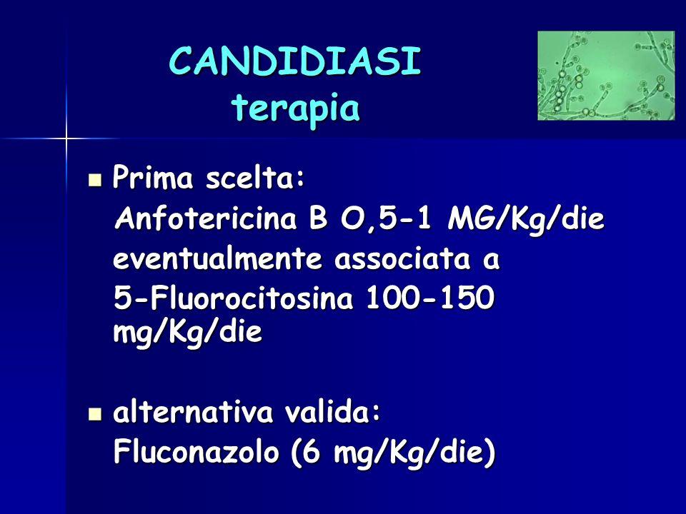 CANDIDIASI terapia Prima scelta: Prima scelta: Anfotericina B O,5-1 MG/Kg/die Anfotericina B O,5-1 MG/Kg/die eventualmente associata a 5-Fluorocitosin