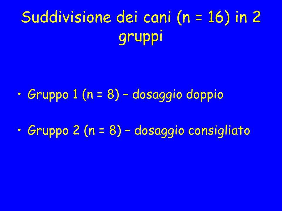 Suddivisione dei cani (n = 16) in 2 gruppi Gruppo 1 (n = 8) – dosaggio doppio Gruppo 2 (n = 8) – dosaggio consigliato