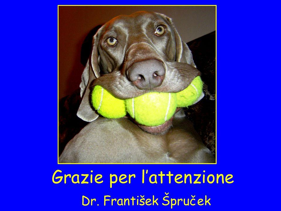 Grazie per lattenzione Dr. František Špruček