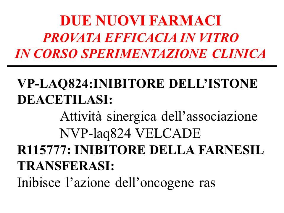 DUE NUOVI FARMACI PROVATA EFFICACIA IN VITRO IN CORSO SPERIMENTAZIONE CLINICA VP-LAQ824:INIBITORE DELLISTONE DEACETILASI: Attività sinergica dellassociazione NVP-laq824 VELCADE R115777: INIBITORE DELLA FARNESIL TRANSFERASI: Inibisce lazione delloncogene ras