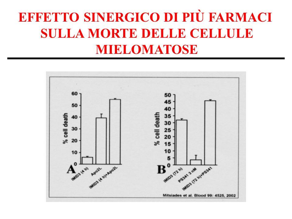 EFFETTO SINERGICO DI PIÙ FARMACI SULLA MORTE DELLE CELLULE MIELOMATOSE