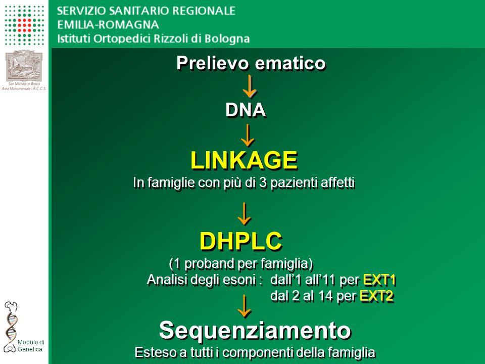 Modulo di Genetica Prelievo ematico DNA LINKAGE In famiglie con più di 3 pazienti affetti LINKAGE In famiglie con più di 3 pazienti affetti DHPLC (1 proband per famiglia) EXT1 Analisi degli esoni : dall1 all11 per EXT1 EXT2 dal 2 al 14 per EXT2 DHPLC (1 proband per famiglia) EXT1 Analisi degli esoni : dall1 all11 per EXT1 EXT2 dal 2 al 14 per EXT2 Sequenziamento Esteso a tutti i componenti della famiglia Sequenziamento Esteso a tutti i componenti della famiglia