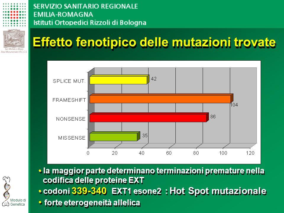 Modulo di Genetica Effetto fenotipico delle mutazioni trovate la maggior parte determinano terminazioni premature nella codifica delle proteine EXT codoni 339-340 EXT1 esone2 : Hot Spot mutazionale forte eterogeneità allelica la maggior parte determinano terminazioni premature nella codifica delle proteine EXT codoni 339-340 EXT1 esone2 : Hot Spot mutazionale forte eterogeneità allelica