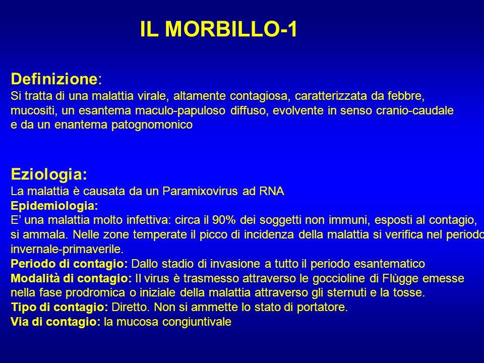 IL MORBILLO-1 Definizione: Si tratta di una malattia virale, altamente contagiosa, caratterizzata da febbre, mucositi, un esantema maculo-papuloso dif