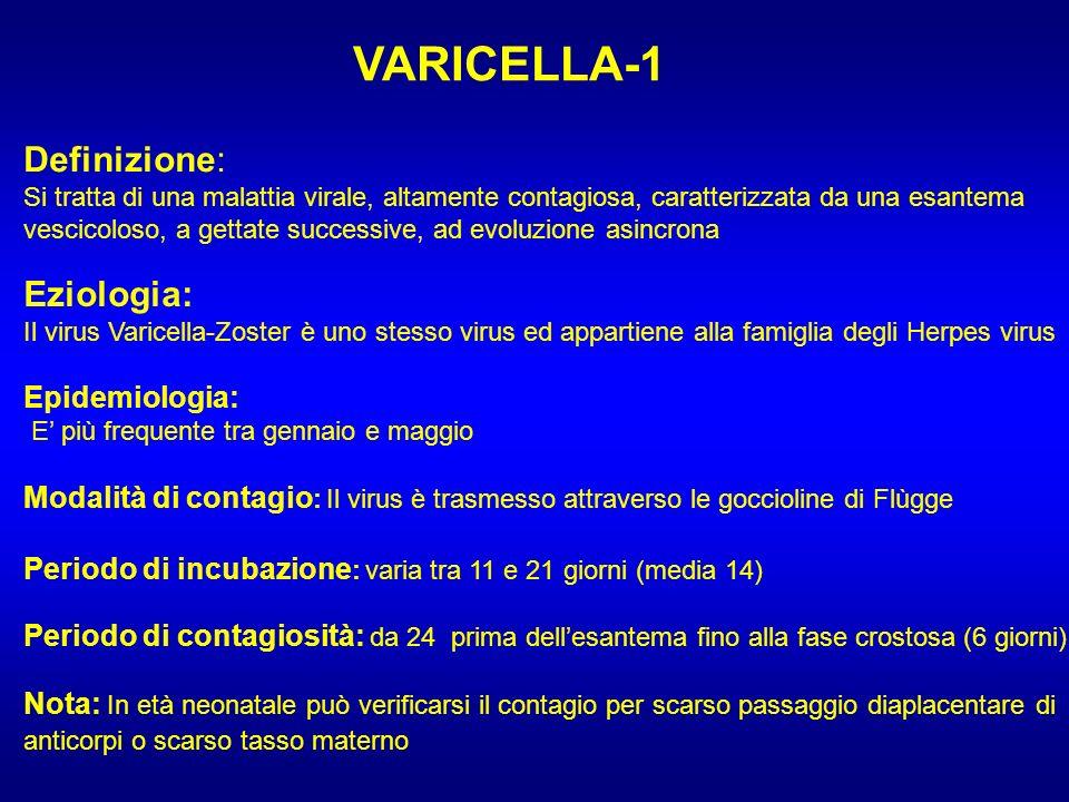 VARICELLA-1 Definizione: Si tratta di una malattia virale, altamente contagiosa, caratterizzata da una esantema vescicoloso, a gettate successive, ad