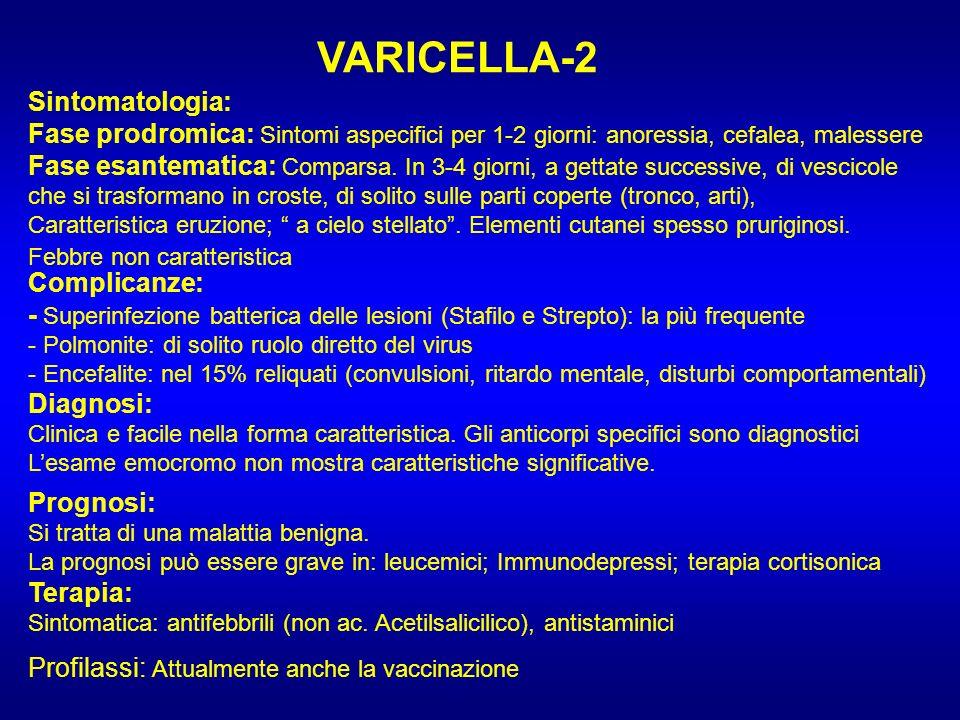 VARICELLA-2 Sintomatologia: Fase prodromica: Sintomi aspecifici per 1-2 giorni: anoressia, cefalea, malessere Fase esantematica: Comparsa. In 3-4 gior
