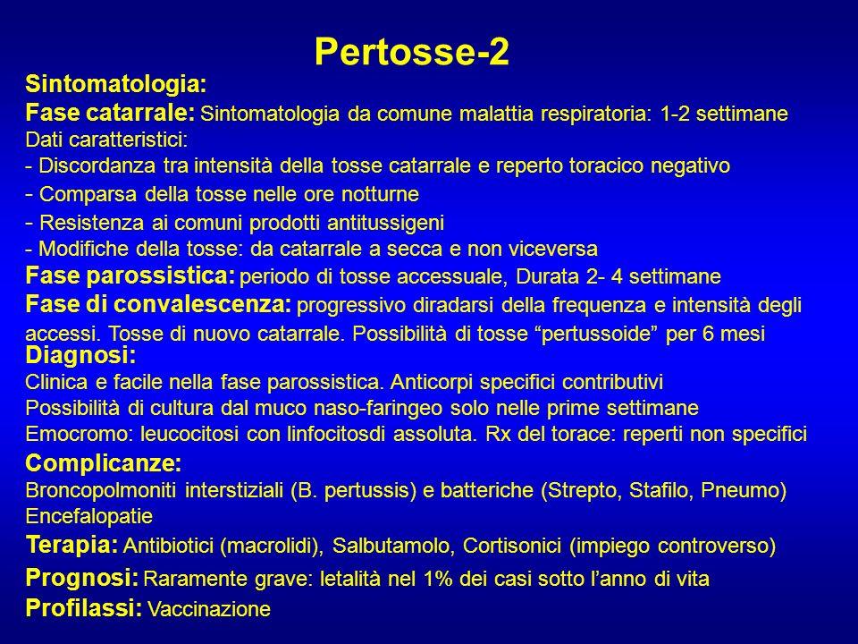 Pertosse-2 Sintomatologia: Fase catarrale: Sintomatologia da comune malattia respiratoria: 1-2 settimane Dati caratteristici: - Discordanza tra intens