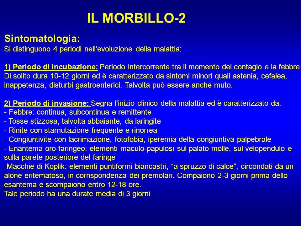 IL MORBILLO-2 Sintomatologia: Si distinguono 4 periodi nellevoluzione della malattia: 1) Periodo di incubazione: Periodo intercorrente tra il momento