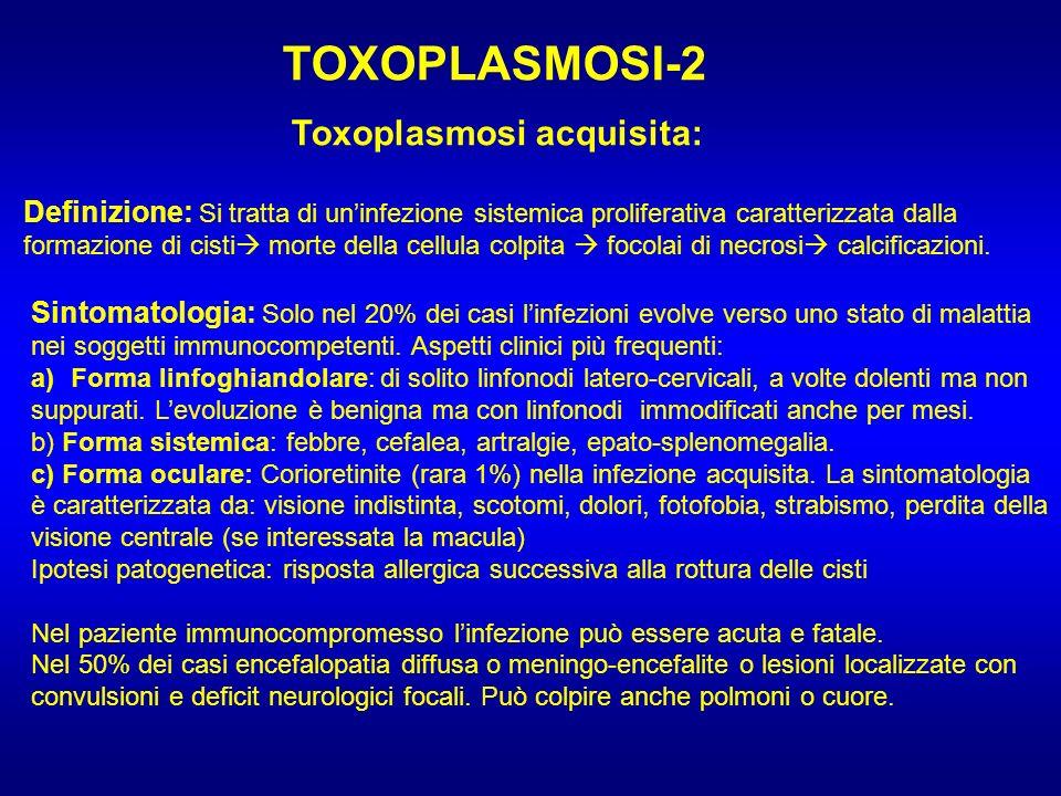 TOXOPLASMOSI-2 Toxoplasmosi acquisita: Definizione: Si tratta di uninfezione sistemica proliferativa caratterizzata dalla formazione di cisti morte de
