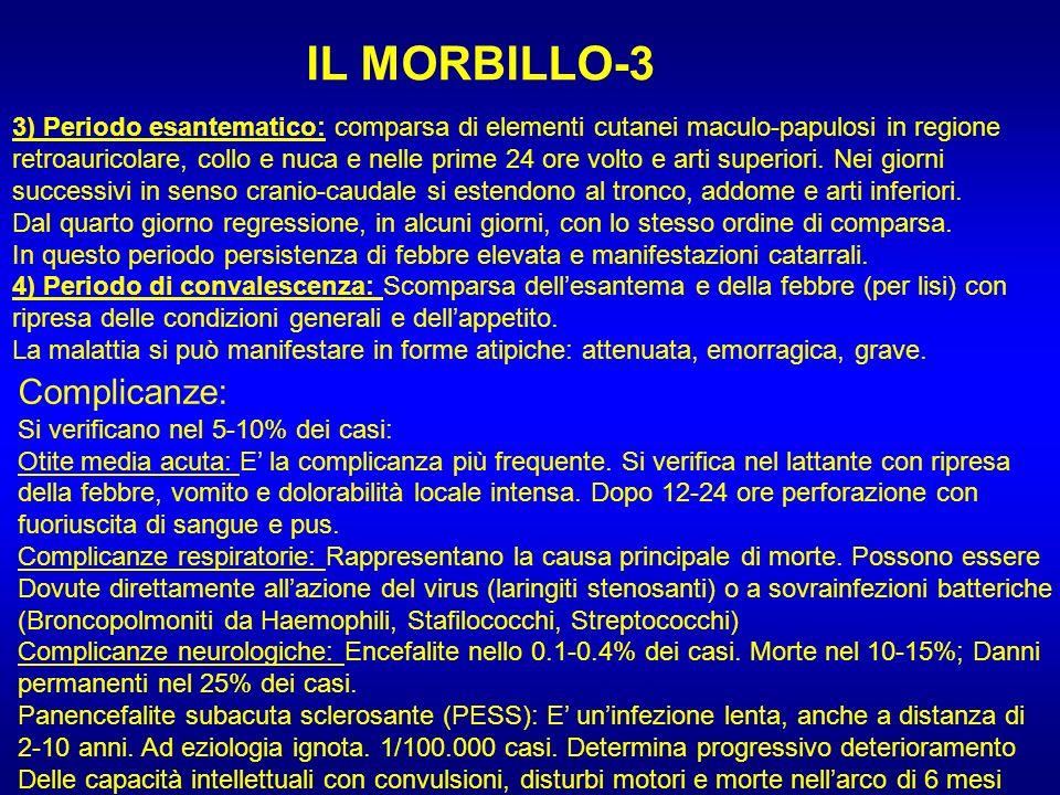 IL MORBILLO-3 3) Periodo esantematico: comparsa di elementi cutanei maculo-papulosi in regione retroauricolare, collo e nuca e nelle prime 24 ore volt