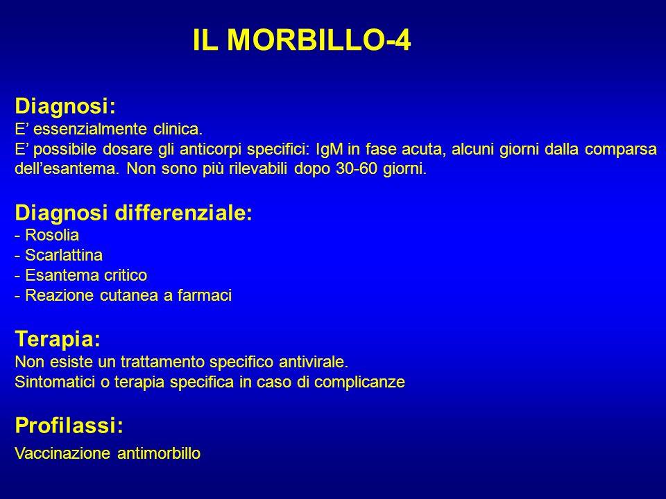 IL MORBILLO-4 Diagnosi: E essenzialmente clinica. E possibile dosare gli anticorpi specifici: IgM in fase acuta, alcuni giorni dalla comparsa dellesan