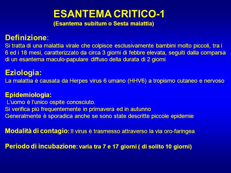 ESANTEMA CRITICO-1 (Esantema subitum o Sesta malattia) Definizione: Si tratta di una malattia virale che colpisce esclusivamente bambini molto piccoli