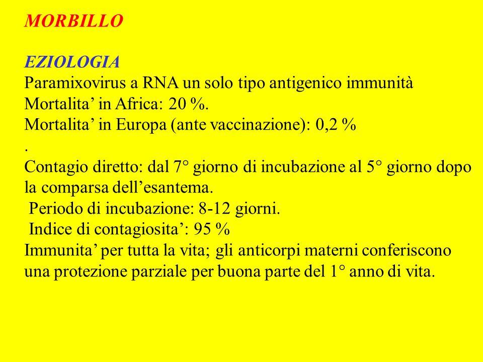 MORBILLO EZIOLOGIA Paramixovirus a RNA un solo tipo antigenico immunità Mortalita in Africa: 20 %. Mortalita in Europa (ante vaccinazione): 0,2 %. Con