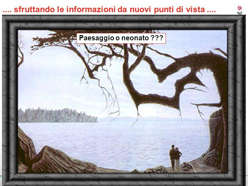 IBM PERFORMANCE EVENTS 6.... sfruttando le informazioni da nuovi punti di vista.... Paesaggio o neonato ???