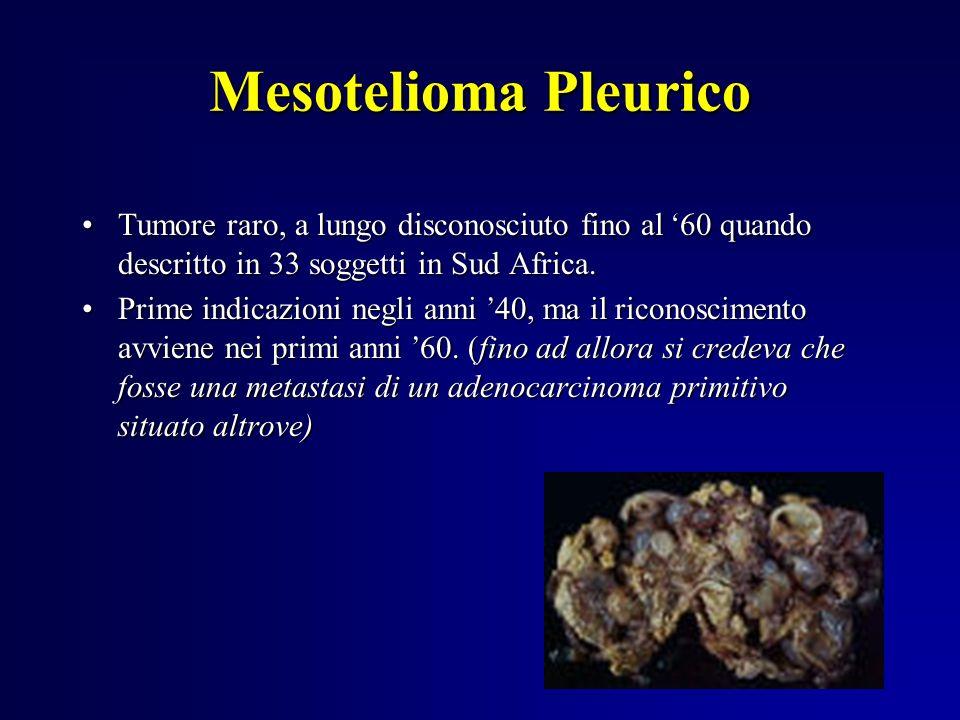Mesotelioma Pleurico Tumore raro, a lungo disconosciuto fino al 60 quando descritto in 33 soggetti in Sud Africa.Tumore raro, a lungo disconosciuto fi