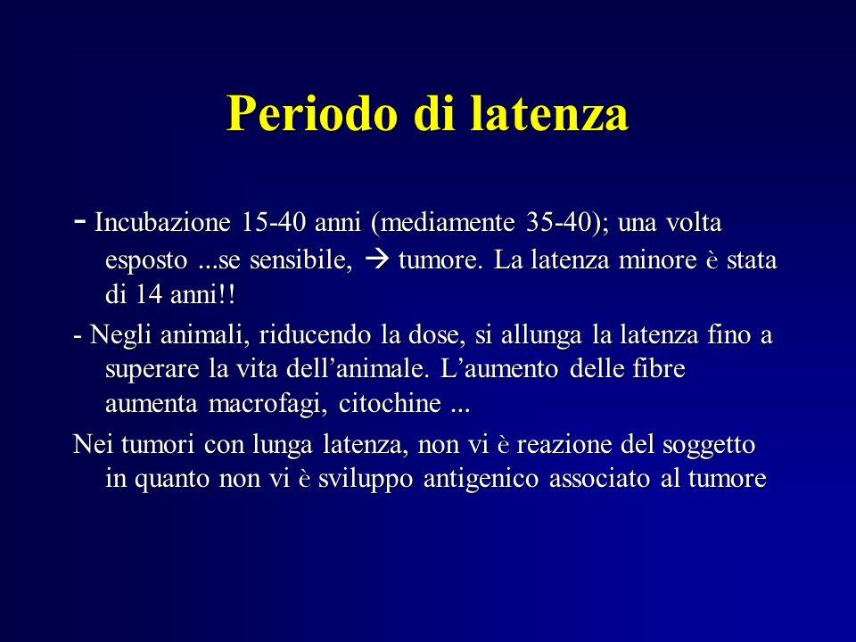 Periodo di latenza - Incubazione 15-40 anni (mediamente 35-40); una volta esposto … se sensibile, tumore. La latenza minore è stata di 14 anni!! - Neg