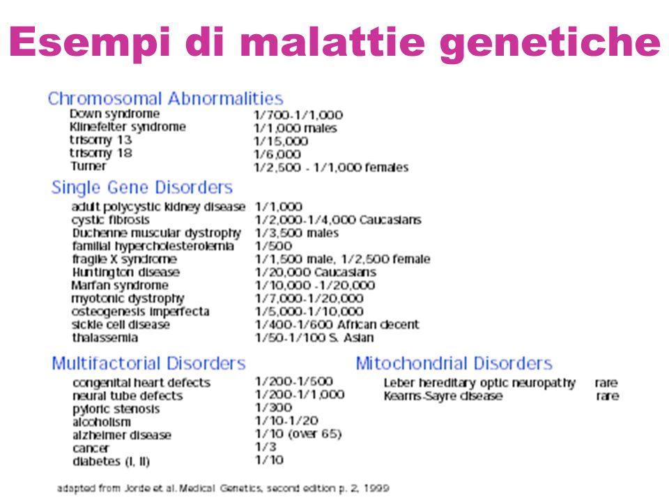 Terminologia Locus: la posizione di un gene su un cromosoma es.