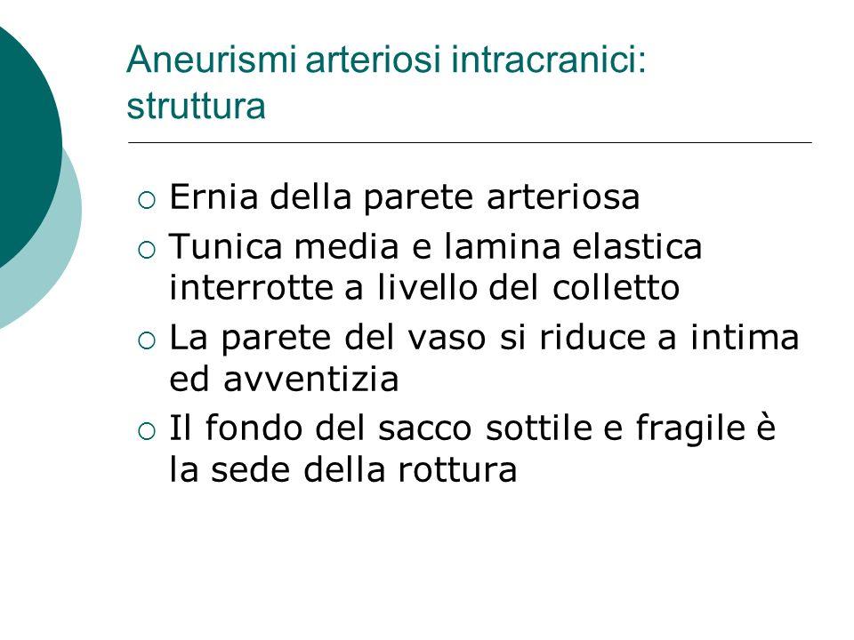Aneurismi arteriosi intracranici: struttura Ernia della parete arteriosa Tunica media e lamina elastica interrotte a livello del colletto La parete de