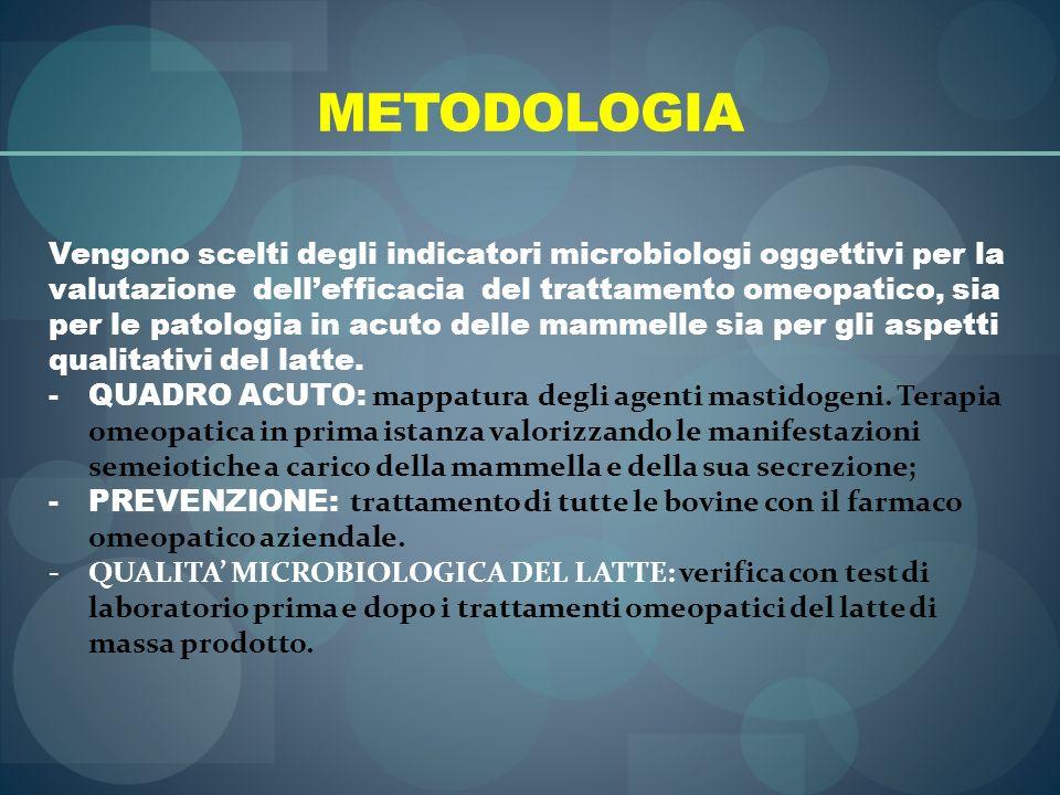 METODOLOGIA Vengono scelti degli indicatori microbiologi oggettivi per la valutazione dellefficacia del trattamento omeopatico, sia per le patologia i