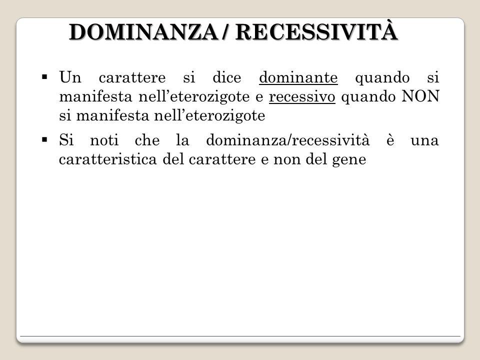 DOMINANZA / RECESSIVITÀ Un carattere si dice dominante quando si manifesta nelleterozigote e recessivo quando NON si manifesta nelleterozigote Si noti