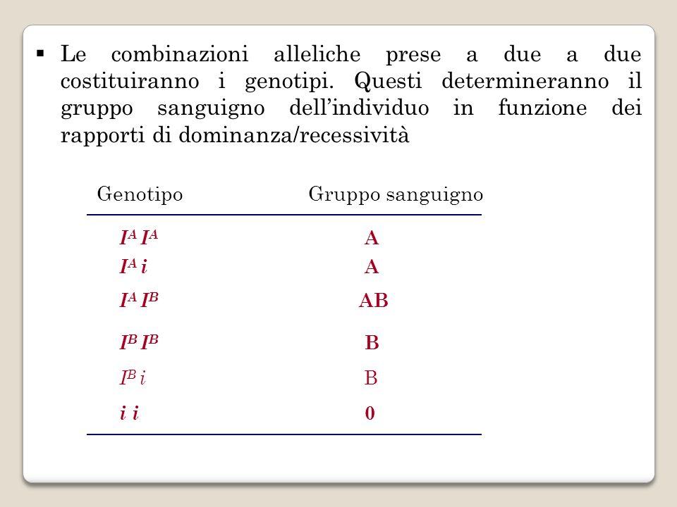 Le combinazioni alleliche prese a due a due costituiranno i genotipi. Questi determineranno il gruppo sanguigno dellindividuo in funzione dei rapporti
