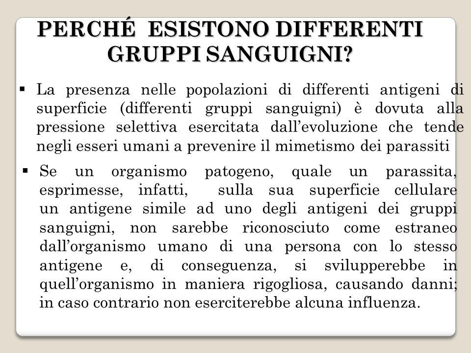 La presenza nelle popolazioni di differenti antigeni di superficie (differenti gruppi sanguigni) è dovuta alla pressione selettiva esercitata dallevol