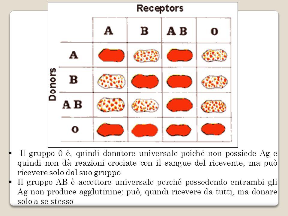 Il gruppo 0 è, quindi donatore universale poiché non possiede Ag e quindi non dà reazioni crociate con il sangue del ricevente, ma può ricevere solo d