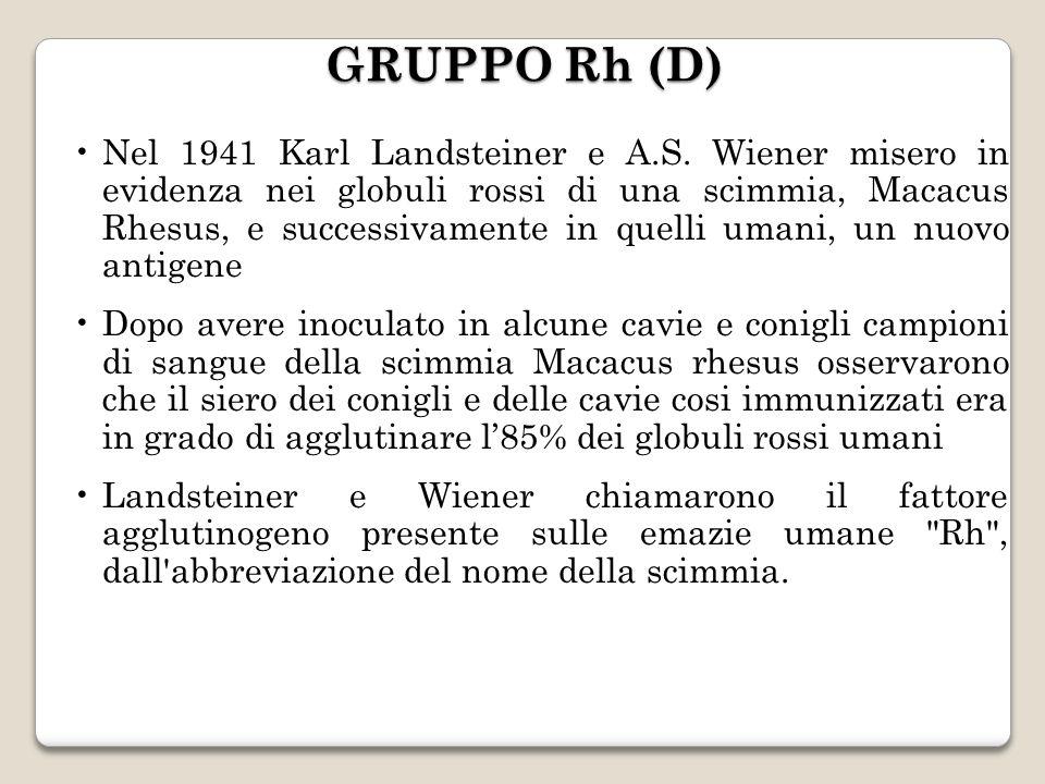 Nel 1941 Karl Landsteiner e A.S. Wiener misero in evidenza nei globuli rossi di una scimmia, Macacus Rhesus, e successivamente in quelli umani, un nuo
