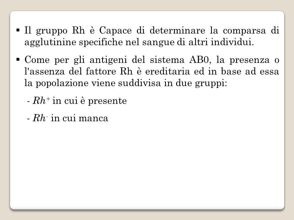 Il gruppo Rh è Capace di determinare la comparsa di agglutinine specifiche nel sangue di altri individui. Come per gli antigeni del sistema AB0, la pr