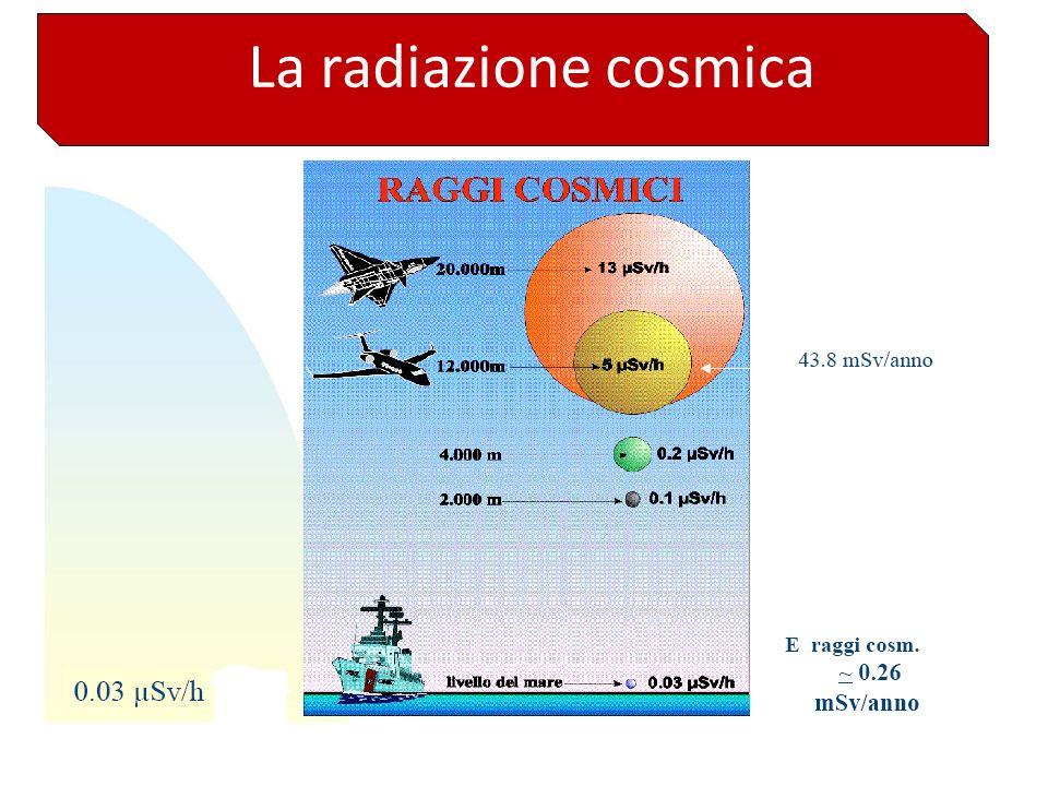Rischi ambientali AAPM Report n. 53 (1995)