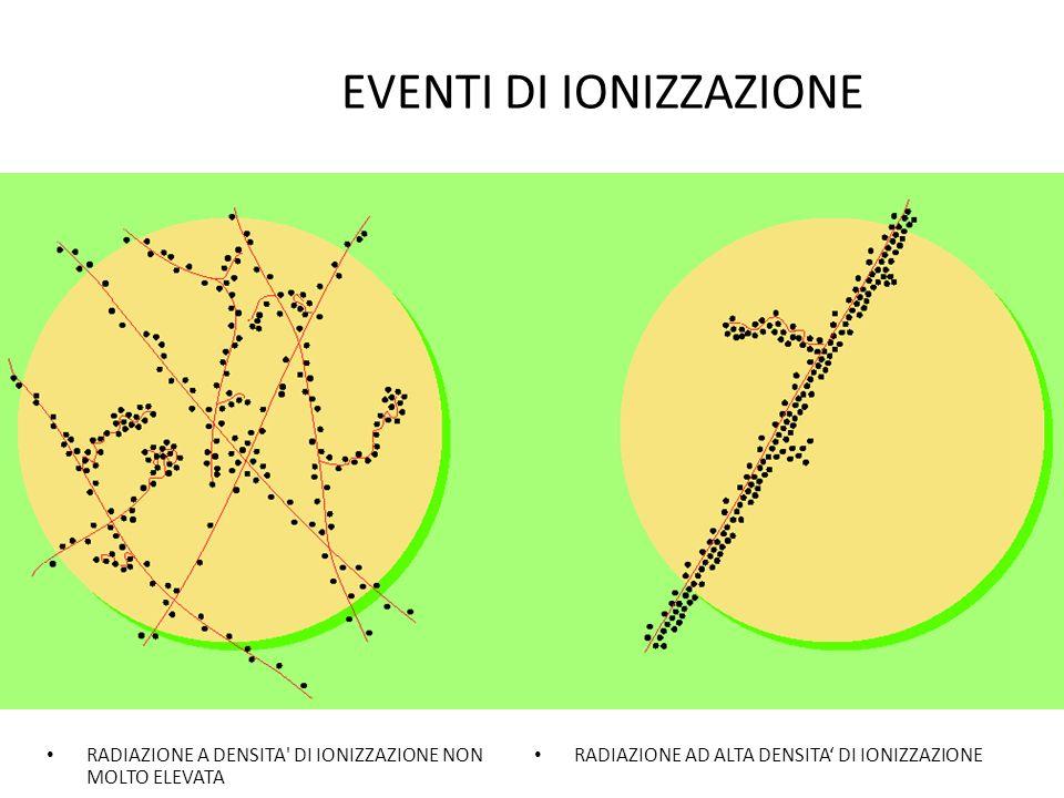 INTERAZIONE DELLA RADIAZIONE ELETTROMAGNETICA Nel caso di fasci collimati di fotoni monoenergetici incidenti su un assorbitore di spessore dx e densit