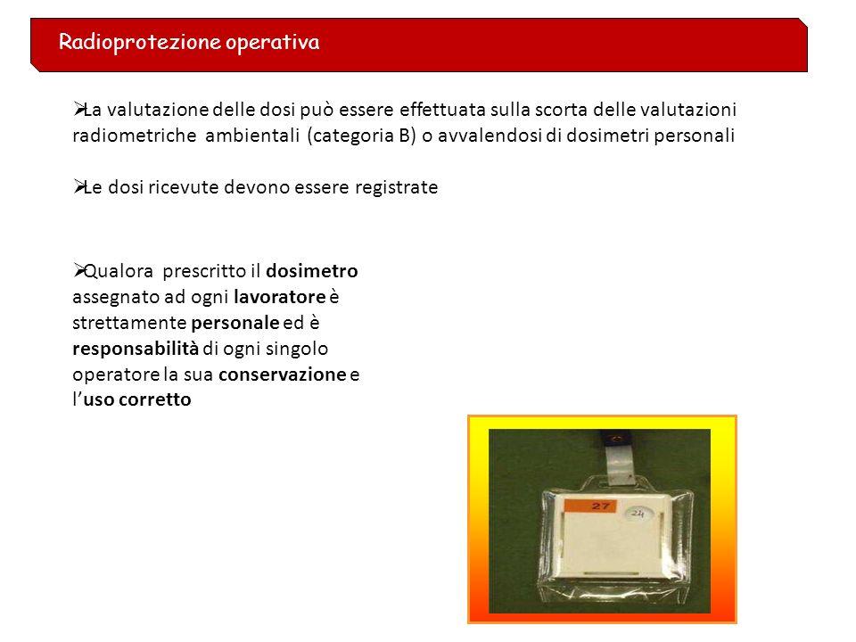 Norme interne di radioprotezione sono predisposte dallEsperto Qualificato per conto del Datore di Lavoro, ai sensi dellart. 61 del D.Lgs 230/95. sono