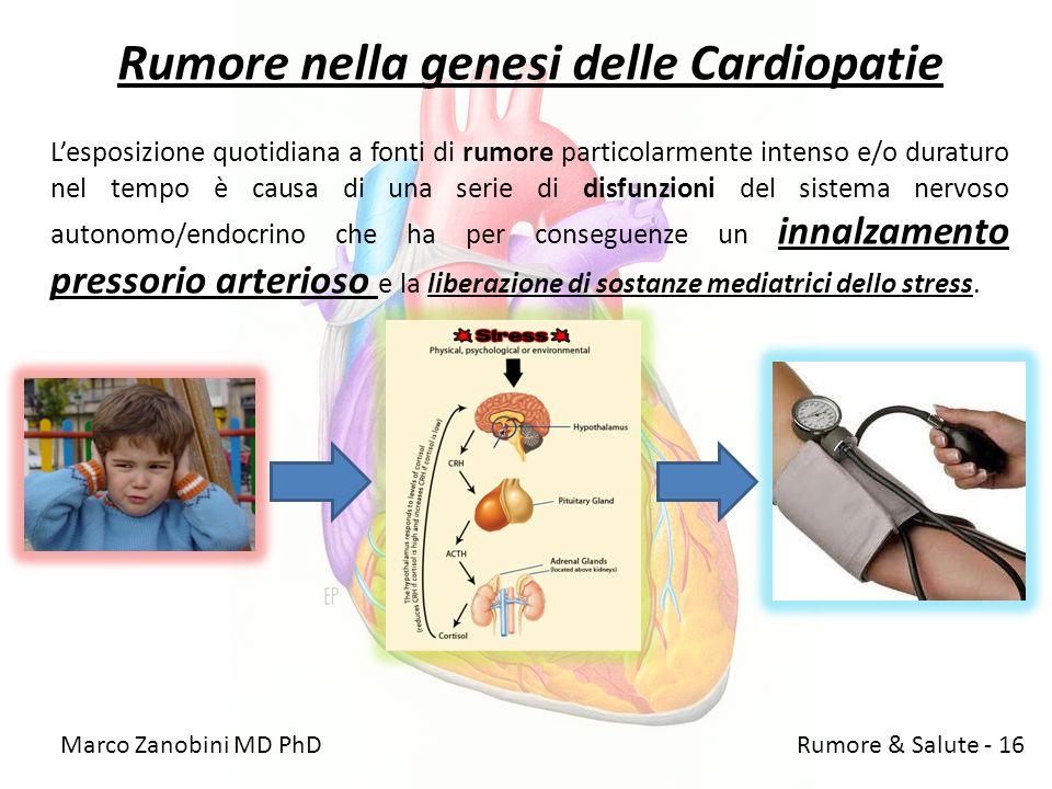 Rumore nella genesi delle Cardiopatie Lesposizione quotidiana a fonti di rumore particolarmente intenso e/o duraturo nel tempo è causa di una serie di