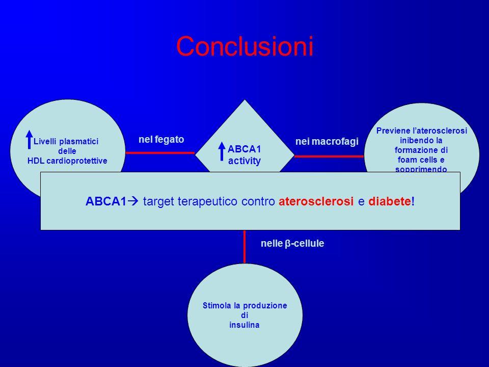 Conclusioni ABCA1 activity Previene laterosclerosi inibendo la formazione di foam cells e sopprimendo linfiammazione nei macrofagi Livelli plasmatici