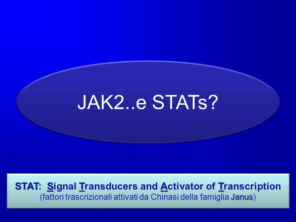JAK2..e STATs? STATSTAT STAT: Signal Transducers and Activator of Transcription Janus (fattori trascrizionali attivati da Chinasi della famiglia Janus