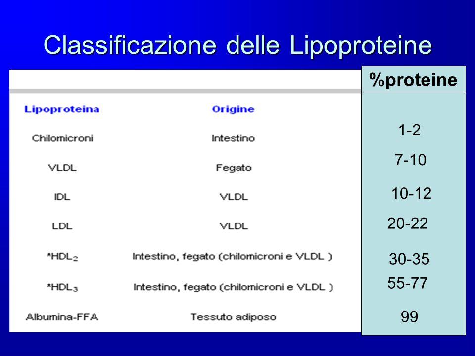 Classificazione delle Lipoproteine %proteine 1-2 7-10 10-12 20-22 30-35 55-77 99