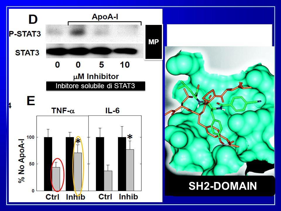 Linterazione di APO-A1 con differenti linee macrofagiche che esprimono ABCA1, deprime la produzione di citochine proinfiammatorie attraverso il sistem