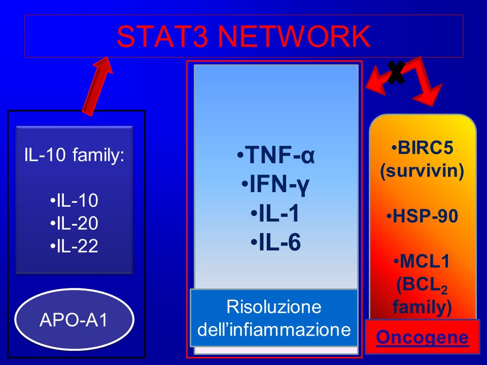STAT3 NETWORK IL-10 family: IL-10 IL-20 IL-22 IL-10 family: IL-10 IL-20 IL-22 APO-A1 APO-A1 BIRC5 (survivin) HSP-90 MCL1 (BCL 2 family) TNF-α IFN-γ IL