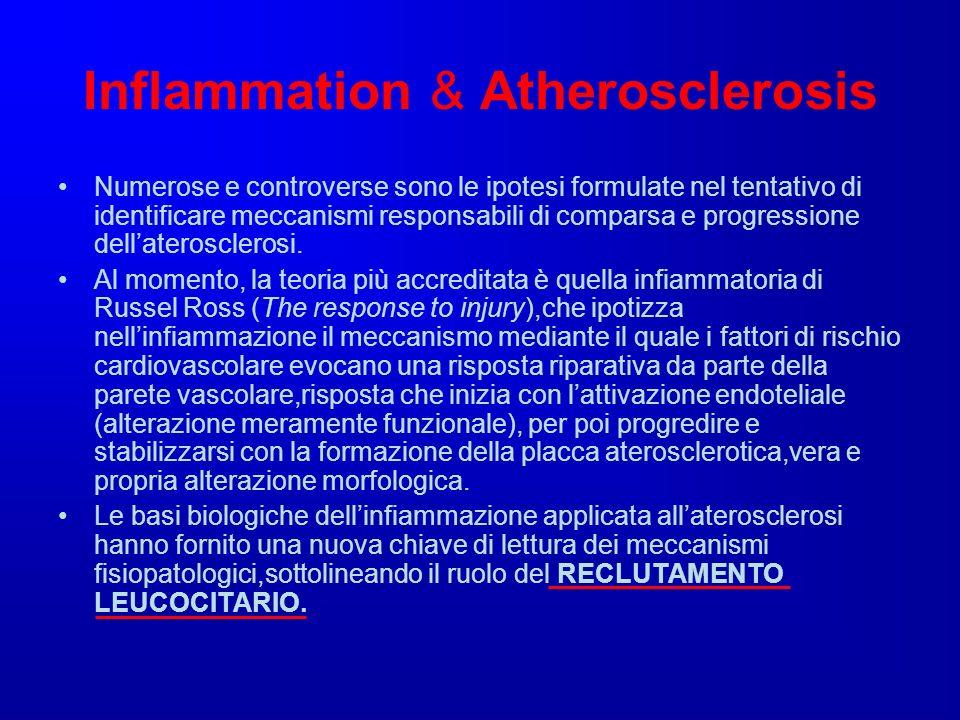 Inflammation & Atherosclerosis Numerose e controverse sono le ipotesi formulate nel tentativo di identificare meccanismi responsabili di comparsa e pr