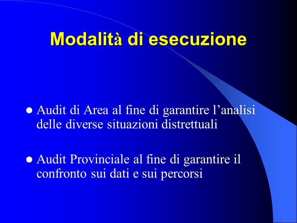 Modalit à di esecuzione Audit di Area al fine di garantire lanalisi delle diverse situazioni distrettuali Audit Provinciale al fine di garantire il confronto sui dati e sui percorsi