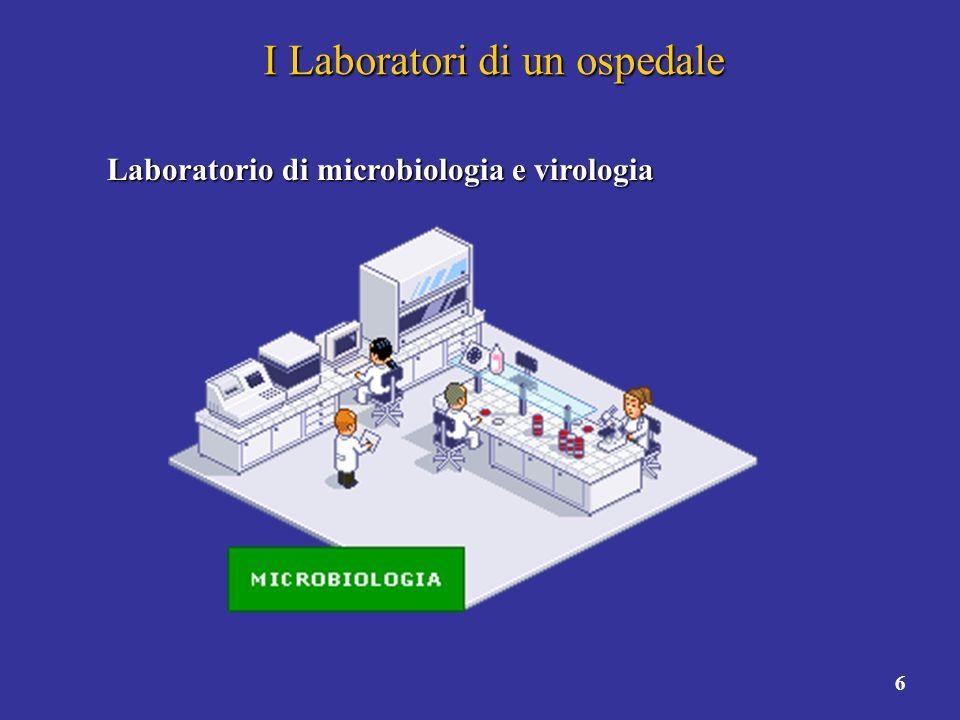 7 I Laboratori di un ospedale Laboratorio di immunotrasfusionale