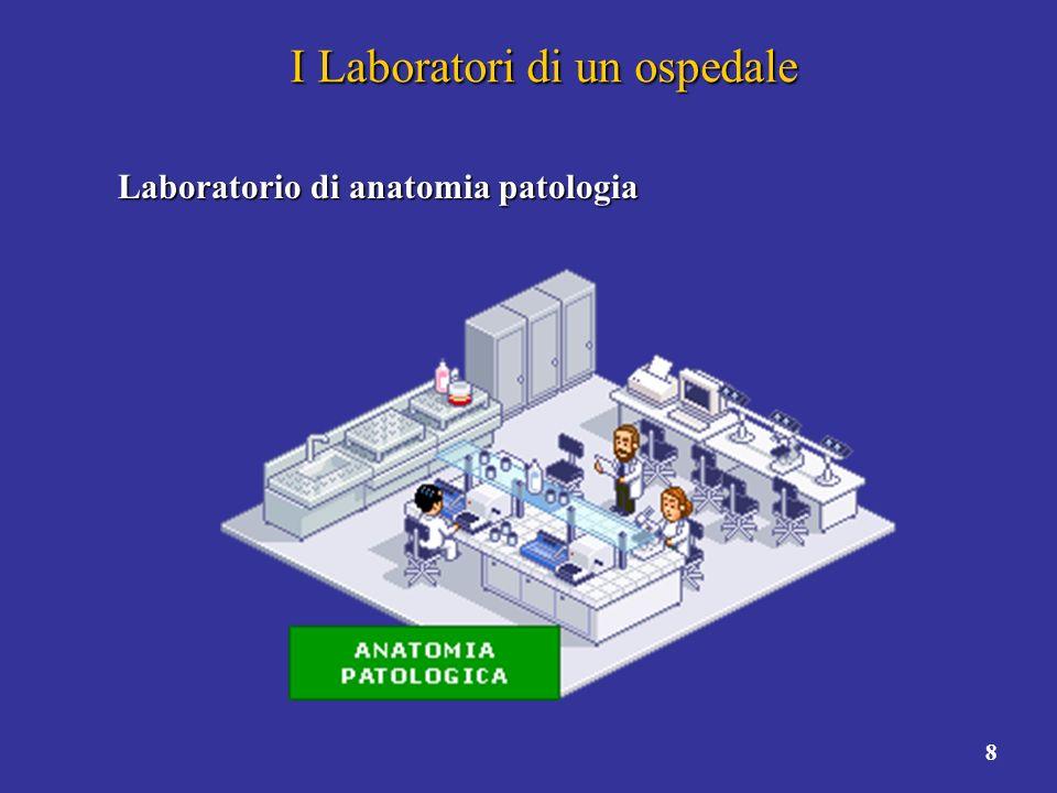 9 I Laboratori di un ospedale Quali sono le differeze.