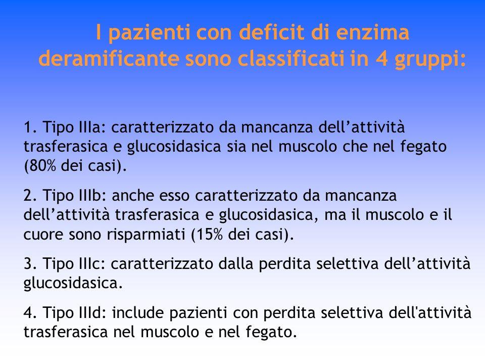 I pazienti con deficit di enzima deramificante sono classificati in 4 gruppi: 1. Tipo IIIa: caratterizzato da mancanza dellattività trasferasica e glu