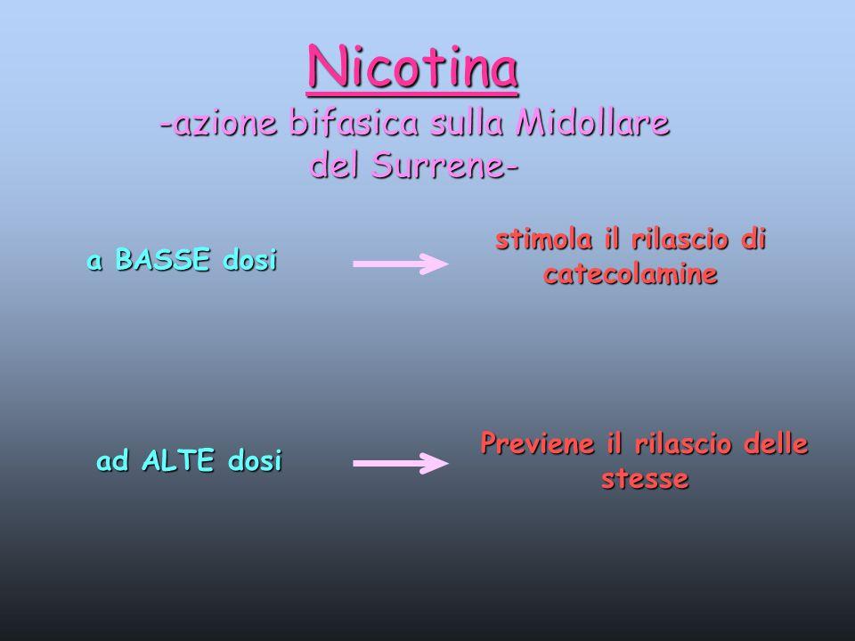 Nicotina -azione bifasica sulla Midollare del Surrene- a BASSE dosi stimola il rilascio di catecolamine ad ALTE dosi Previene il rilascio delle stesse
