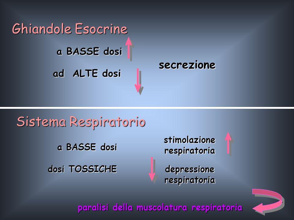 ad ALTE dosi Ghiandole Esocrine a BASSE dosi secrezione Sistema Respiratorio a BASSE dosi stimolazione respiratoria dosi TOSSICHE depressionerespirato